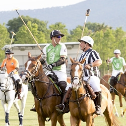Tournoi de Polo & cocktail dînatoire